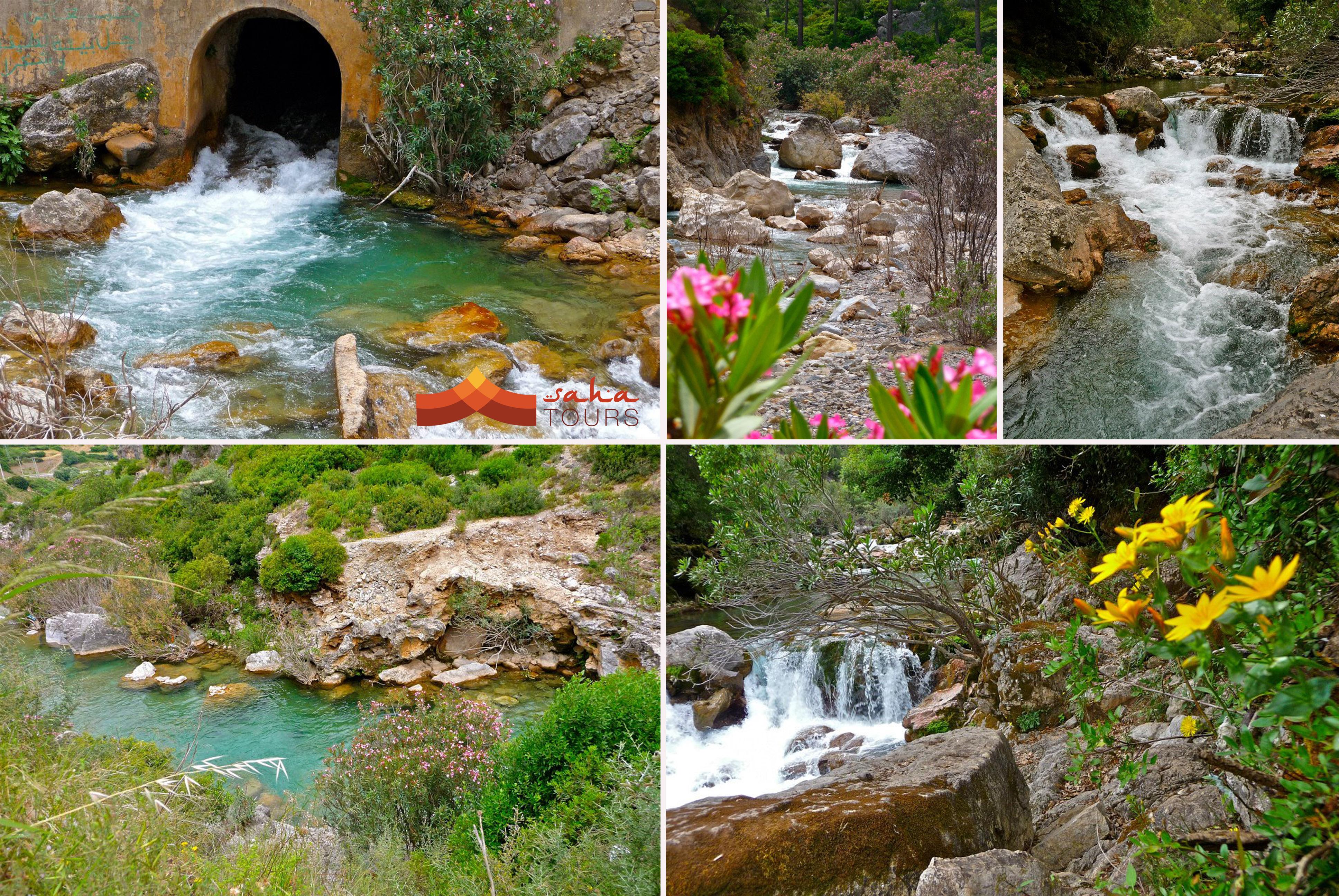 Visitamos el Parque Nacional de Talassemtane 1